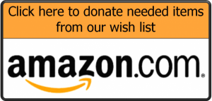 amazon_wishlist_button-600x285